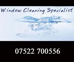 Window Cleaning Specialist